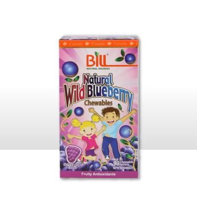 BILL 标叔康加美儿童青少年蓝莓护眼片700MG 90片