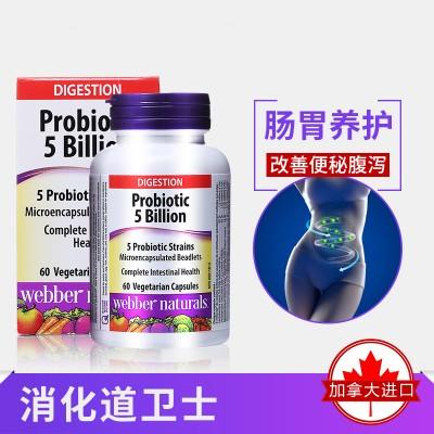 Webber Naturals益生菌50亿60粒养护肠胃基础帮助消化