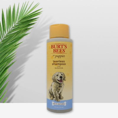 BURT'S BEES小蜜蜂幼犬专用无泪配方洗发水